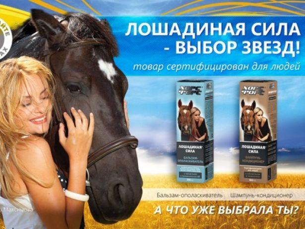 Девушка возле лошади