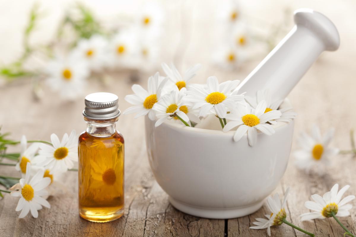 Ромашка аптечная (лекарственная трава) - полезные свойства 98