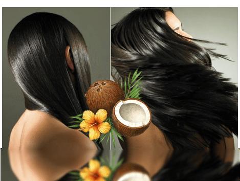 Свойства масла из кокоса